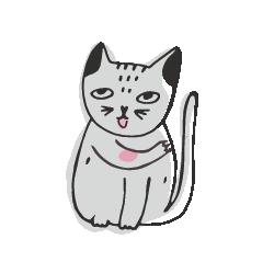 gatto comportamenti compulsivi