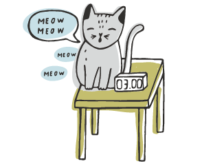 gatto vocalizzazioni eccessive