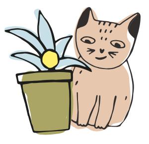 floriterapia gatti